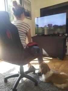 Gogle VR wynajem do domu